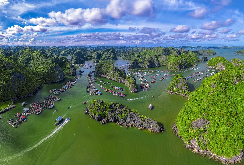Vịnh Lan Hạ, Làng Chài Cái Bèo