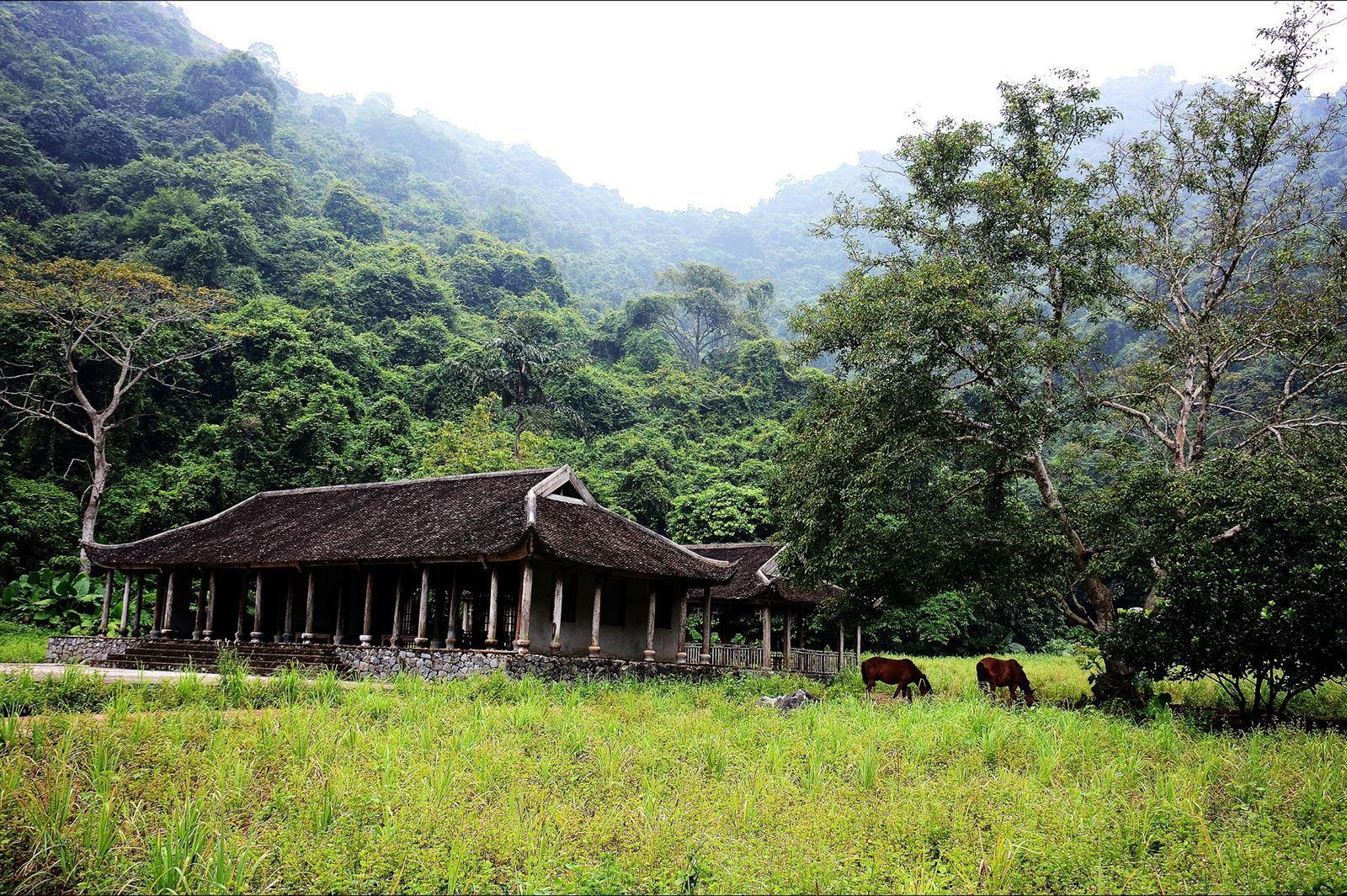 Nhà cũ trong làng Việt Hải