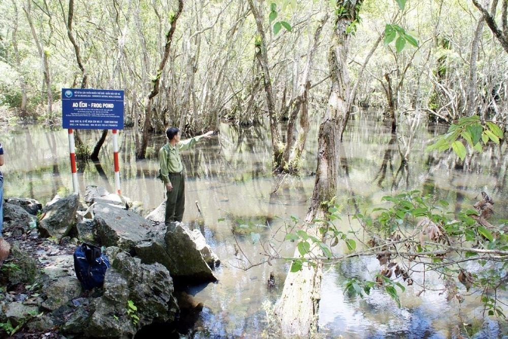 Ao Ếch - Vườn Quốc Gia Cát Bà